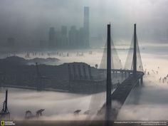 During February and April, fog and mist are prevalant in Hong Kong. This photo shows the Kwai Chung Container Terminals being veiled by patches of fog, leaving only the container tractors and cargo ship trailers visible. The Stonecutters' Bridge with two distinctive bridge towers is one of Hong Kong's landmarks. This serves as the hub of the cargo industry. At the back is the 100-storey International Commerce Centre. This image is titled The Beauty of Hong Kong.Photo and caption by Edward…