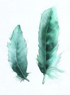 in love with #turquoise #feathers