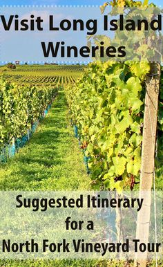 Visit Long Island Wineries - Suggested Itinerary for a North Fork Vineyard Tour …