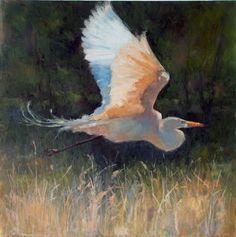 Great Egret  18 x 18 Oil