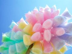 cotton candy... Soft, Heavenly pillows of sugar!!!