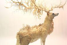 神秘の生態系を身に纏った動物たちの繊細粘土彫刻 : カラパイア
