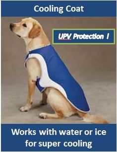 Dog Cooling Coat, Guardian Gear Cooling Vest, Cooling Coat for Vests, www.keepdoggiesafe.com
