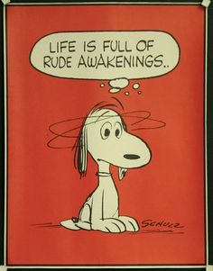 snoopy life is full of rude awakenings