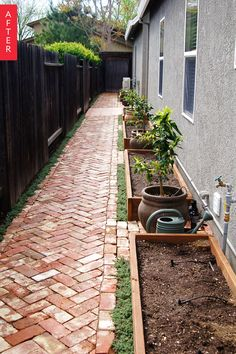 Before & After: A Side Yard Goes from Barren to Bountiful — Wild Ink Press - Love the brick herringbone pathway, creeping thyme ground cover and raised garden beds.