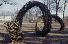 Flux Aura 1996-99  by Finnish artist Jaakko Pernu ##  I think i know what to do with all my grapevines!