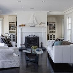 Evanston Project   Traditional   Living Room   Chicago   Jane Kelly,  Designer For Airoom LLC