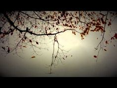 William Basinski - Disintegration Loop d p 2.1 - YouTube