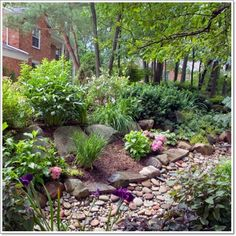 Rock Garden Ideas That Helps You Connect With Nature Rock