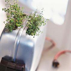 25 Awesome Indoor Garden Herb DIY ideas #gardens #garden #gardendesign #gardendiy