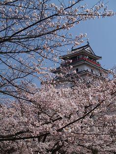 鶴ヶ城 Fukushima