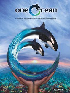 One Ocean - Shamu Stadium SeaWorld (Orlando, Florida; San Antonio, Texas; San Diego, California)