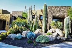 Pascale Land Design made the most of a drought conditions landscape with an eye-catching, low-water cactus gardens for this Southwestern home. Beautiful hardscaping complements the earthy property.