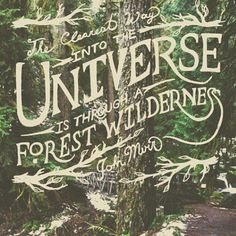 the clearest way into the universe is through a forest wilderness - John Muir Nature Adventure, Adventure Quotes, Pretty Words, Beautiful Words, John Muir Quotes, The Mountains Are Calling, Nature Quotes, Forest Quotes, Travel Quotes