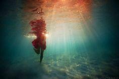 思わず心を奪われる!あまりにも美しい水中作品 - 11