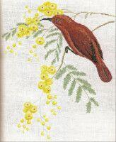 Gallery.ru / Фото #98 - 83 - OlgaHS John Gould, Australian Birds, Painting, Art, Cross Stitch, Art Background, Painting Art, Kunst, Paintings