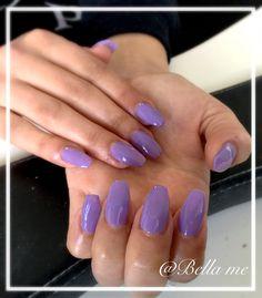 Purple coffin shape