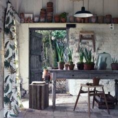 the table, the plants, the old wooden door leading to a walled garden (I'm imagining...)