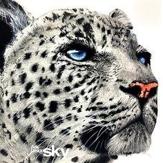 #표범#동물#디자인#자연#정글의법칙#그림#기초디자인#스카이#강동구미술학원#강동스카이미술학원