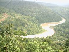 Baghmara Reserve Forest in Meghalaya, India Destinations, Wildlife, Travel Destinations, Viajes