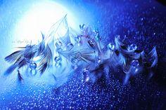 Photo Epic of Blue on blue par Lafugue Logos   on 500px