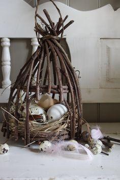 vine birdcage and bird's nest
