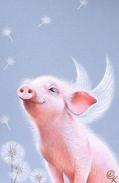 I do see a lot more pigs flying lately. Good luck, everybody!