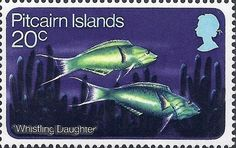 Wrasse (Thalassoma sp.) Pacific Fish, Mutiny On The Bounty, Love Mail, Two Of A Kind, Pitcairn Islands, First Day Covers, My Themes, Fish Art, Stamp Collecting