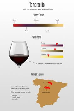 Tempranillo is a rich, full bodied wine that appeals to anyone looking for a powerful, structured, and luxurious style. Rioja Wine, Wine Chart, Chateauneuf Du Pape, Wine Education, Spanish Wine, Wine Guide, Wine Parties, In Vino Veritas, Italian Wine
