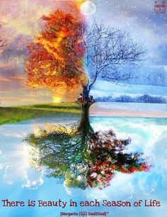 Affirmation - beauty Robert Frost- fire and ice