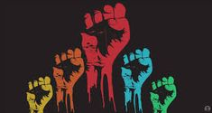 Image result for human rights