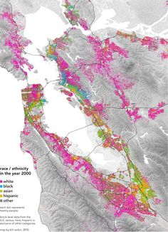 racial distribution in the Bay Area