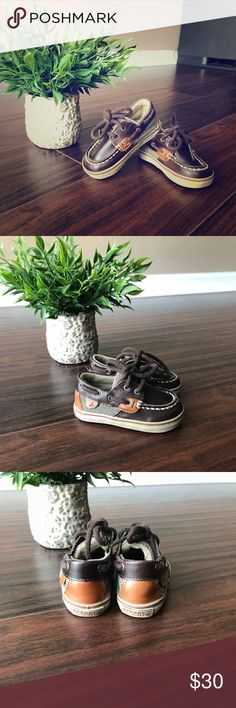 Toddler Sperry Shoes Dark brown toddler Sperry shoes like new. Smoke free home. Sperry Top-Sider Shoes Dress Shoes