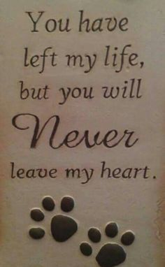 51 Best Ideas For Dogs Love Quotes Heart Rainbow Bridge Dog Quotes, Animal Quotes, Dog Poems, Animal Poems, Dog Sayings, Yorkies, Pekingese, Chihuahuas, I Love Dogs