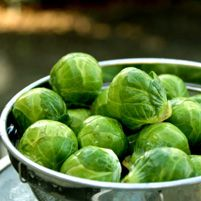 Hashed Brussels Sprouts - Dr. Weil's Healthy Kitchen