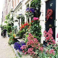 Oh my god  Amsterdam, you keep surprising me  ну это же просто невероятная красота