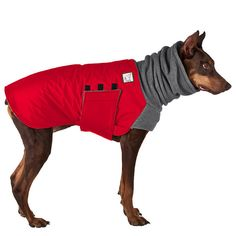If your dog is not a Doberman Pinscher or is a mixed breed, please contact us about making a custom coat for your dog.  Please provide the following information in the Notes to Seller section at checkout: Your order will NOT be processed until we receive these measurements. Failure to include your dog's measurements WILL result in delays or possible cancellation of your order.  -Dogs Weight (in pounds) -Dogs Chest (in inches) -Dogs Length (in inches) -Dogs Neck (in inches) -Dogs Gender *When…