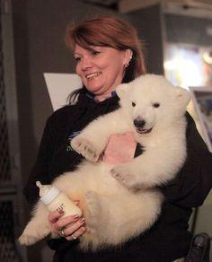 The best job in Buffalo? Polar bear day care at the Buffalo Zoo. Veterinary technician Alice