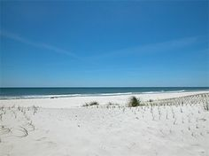 Gulf Shores Alabama- these sugar sand beaches are Amazing! Great family vacation!