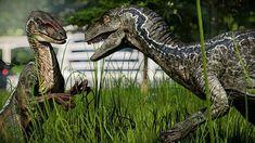 Jurassic Park Poster, Jurassic Park Series, Jurassic Park World, J Park, Park Art, Video Link, Prehistoric, Dragons, Earth