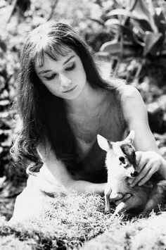 Audrey Hepburn and a fawn.