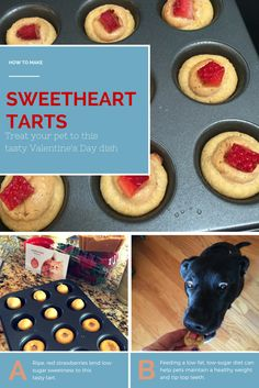 Sink your teeth into this homemade recipe for Sweetheart Tarts, a low-sugar treat guaranteed to make your pet's heart flutter and mouth water on Valentine's Day.