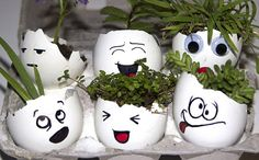 Face Emoji Eggshell Planters - For the extra artsy gardeners, eggshells will make a great medium for your crafts such as these silly emoji faces. Your imagination is your only limit to making great designs for these tiny planters. Egg Crafts, Crafts For Kids, Craft Kids, Egg Shell Planters, Types Of Cactus Plants, Egg Shells In Garden, Herb Garden Planter, Recycled Garden Art, Gardening Tips