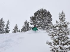 It's snowing again! Time to get to Breck for some fresh tracks!