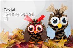Tutorial: Dennenappel uil ★, leuke DIY voor kinderen. Makkelijk te maken. Inclusief gratis patroon voor het vilt en uitleg. Ideaal voor de herfst DIY.