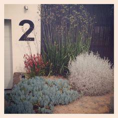 Grounded Gardens, Toorak Property