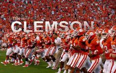 Love the Clemson Tigers! charlestonjewelryandgifts.com