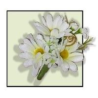 Google Image Result for http://www.giftbasketdelights.net/200permanentdaisycorsage1.jpg