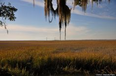 "The Golden Isles are listed by the Huffington Post as one of the ""8 Southern Islands You Should Be Visiting This Summer"" - April 2014"