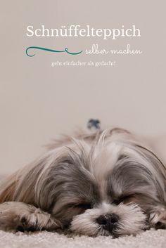 Hundehalter lieben sie: Schnüffelteppiche. Hier gelangt ihr zu einer Anleitung, wie ihr ganz einfach selber einen basteln könnt.